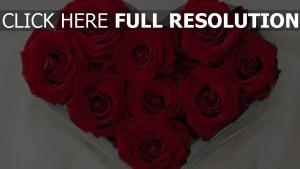 rosen blumen blumenstrauß herz romantik