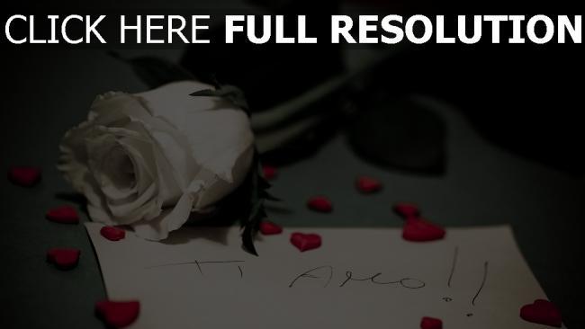 hd hintergrundbilder note beichte rose blume romantik