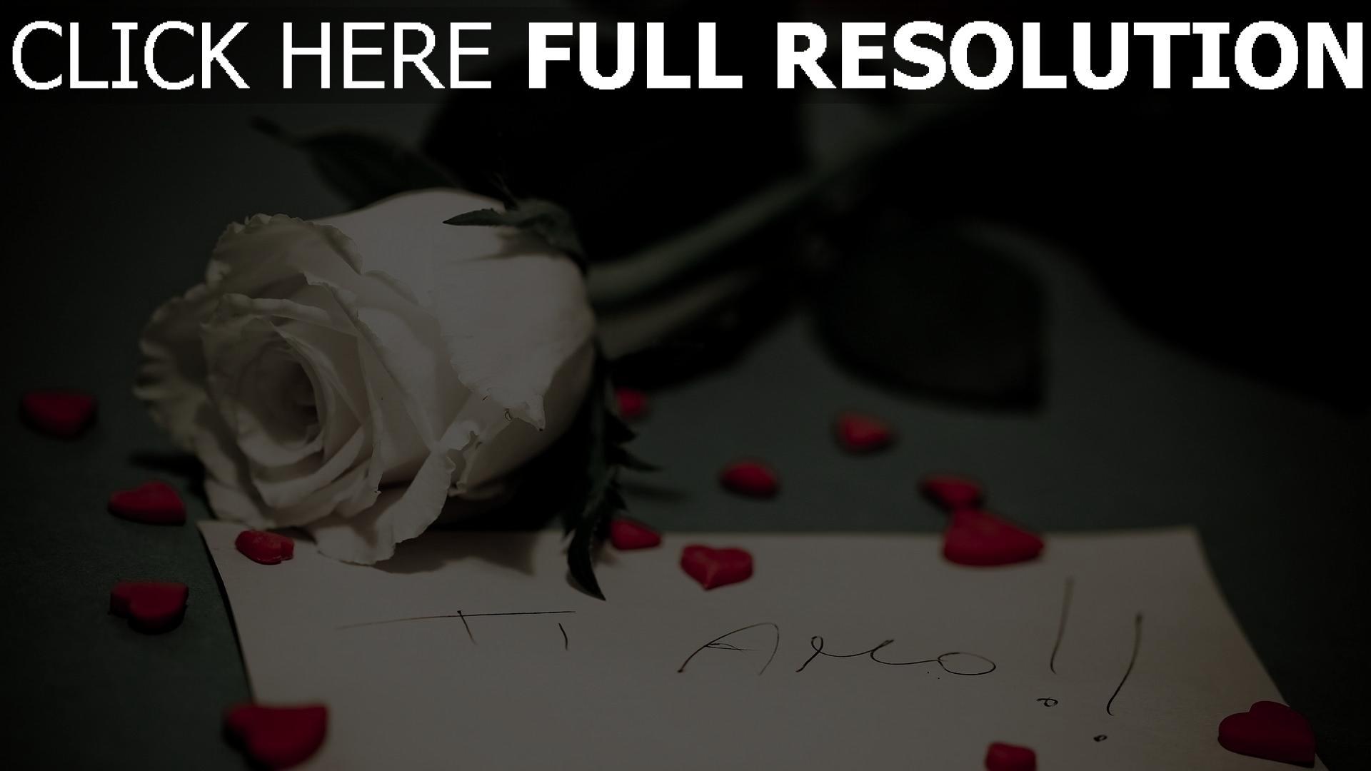 hd hintergrundbilder note beichte rose blume romantik 1920x1080