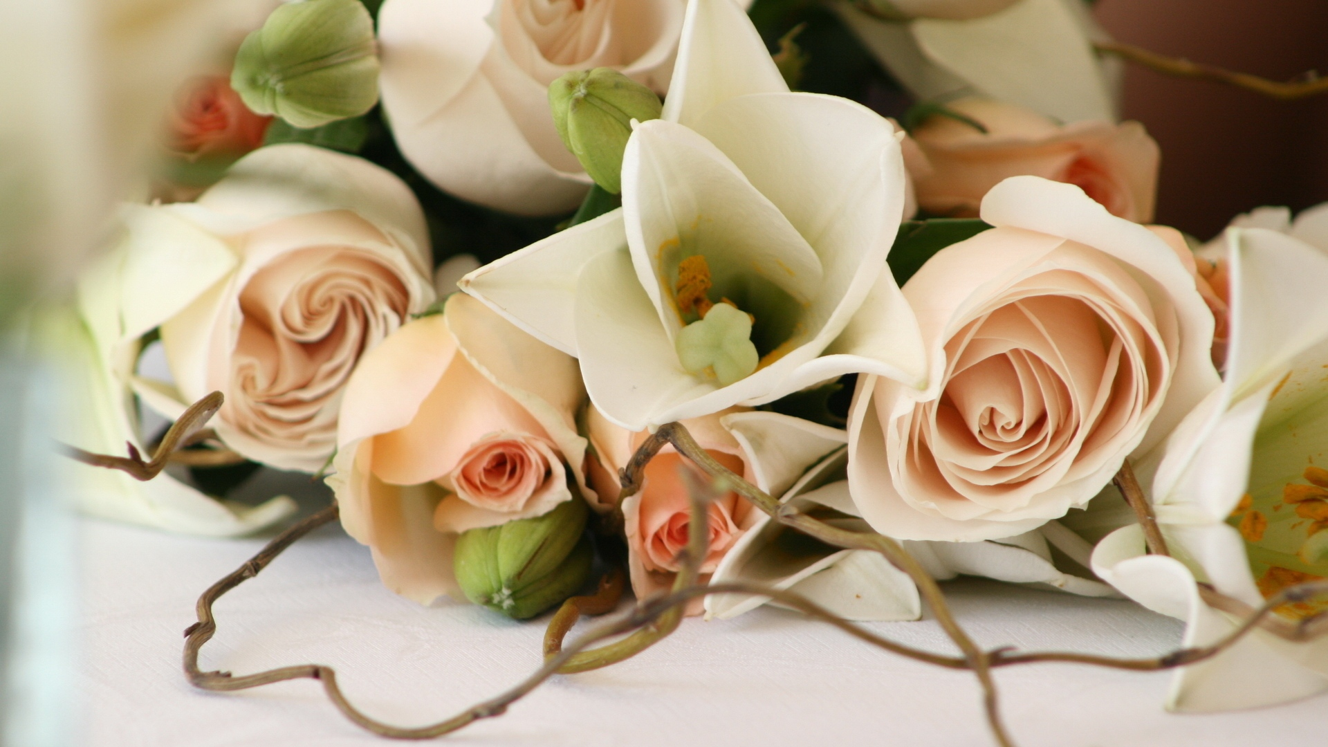 hd hintergrundbilder blumenstrauß rosen fein romantiker 1920x1080