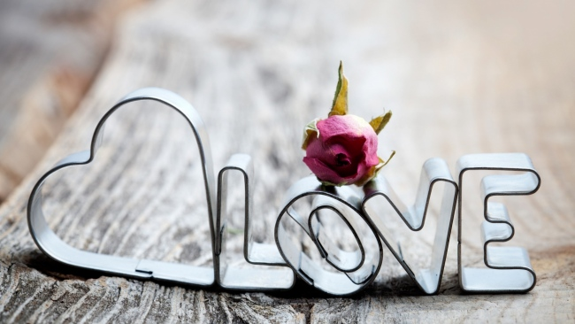 hd hintergrundbilder rose briefe metall romantik