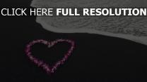 blumen herzen meer romantik