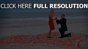 paar romantik rose meer angebot