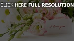 blumenstrauß blumen rosen grüße romantik
