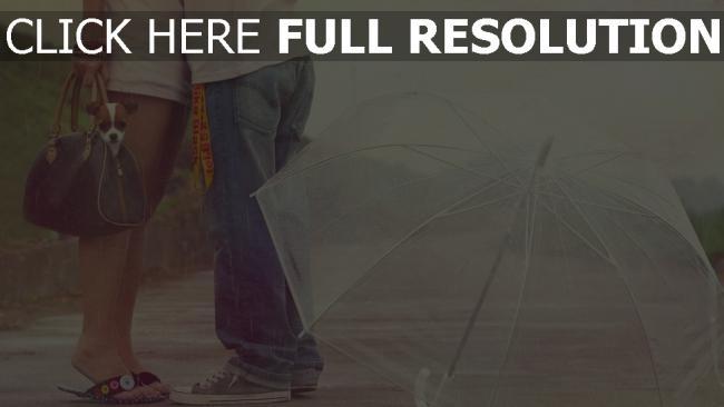 hd hintergrundbilder paar umarmen regen regenschirm hund