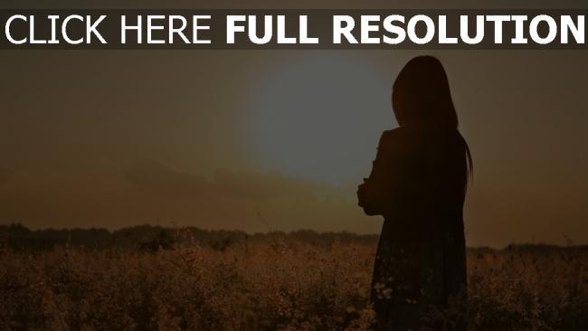 hd hintergrundbilder silhouette feld sonnenuntergang sonne