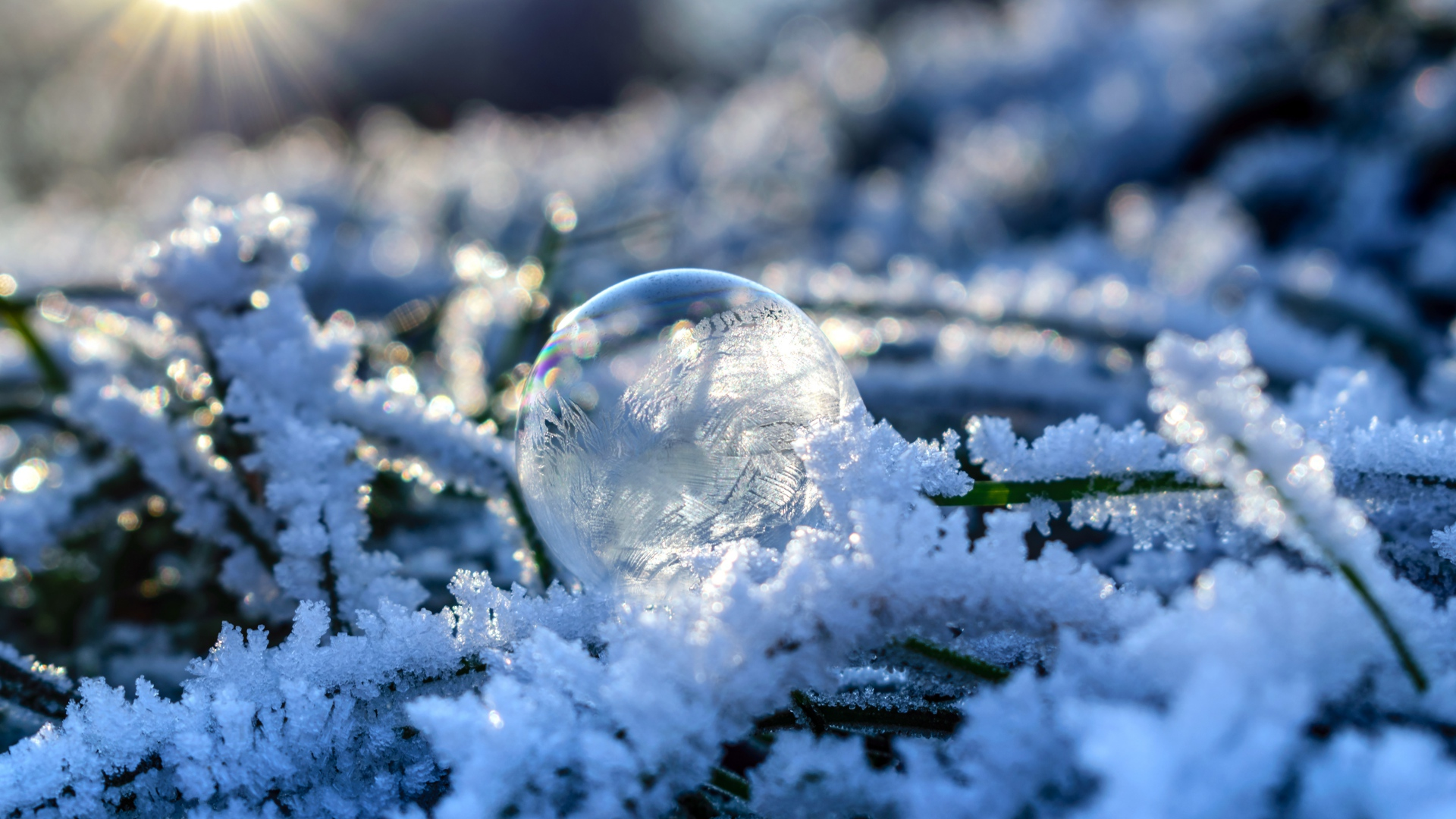 Hd Hintergrundbilder Kugel Schnee Frost Blase Desktop
