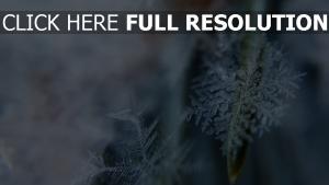 eis nahaufnahme form schneeflocken