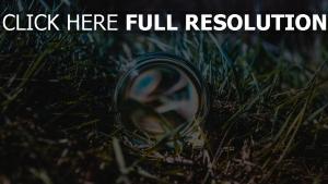gras ball close-up glas