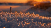 glanz frost frostig