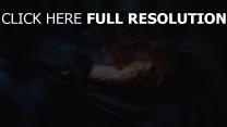 close-up tropfen blatt trocken