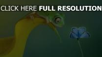 frosch blick schmetterling klinge