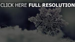 schneeflocke eis muster schnee winter
