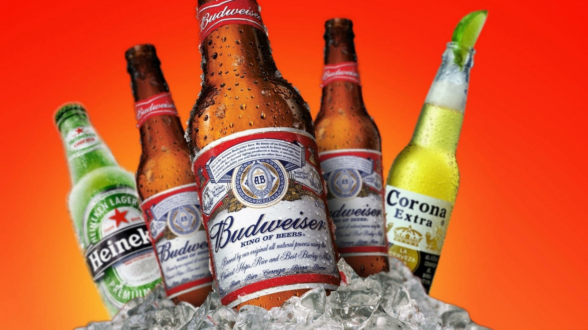hd hintergrundbilder heineken budweiser corona bier getränke eis 1920x1080