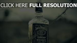jack daniels whisky alkohol glas flasche