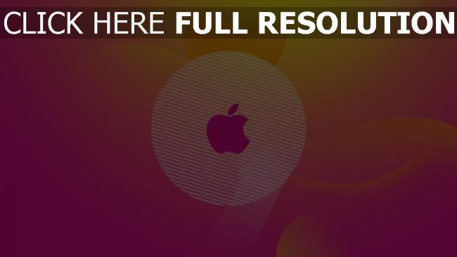 hd hintergrundbilder apple logo rosa rund klar