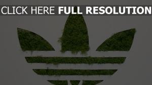 adidas gras logo hintergrund weißer