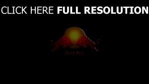 red bull getränke energie logo stiere