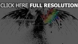 vogel pink floyd spray grafiken farben