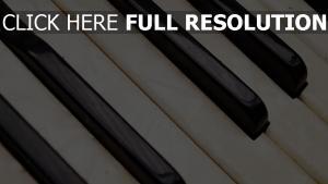 musikinstrument tasten textur akkordeon