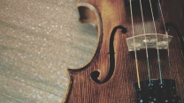 violin, strings, wooden