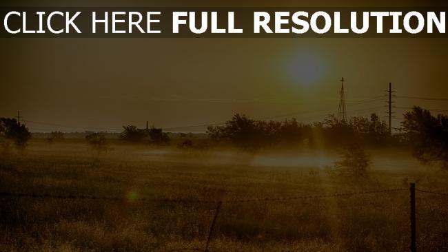 hd hintergrundbilder sonne gras sommer licht wärme