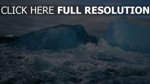 antarktis eis meer pinguine wellen