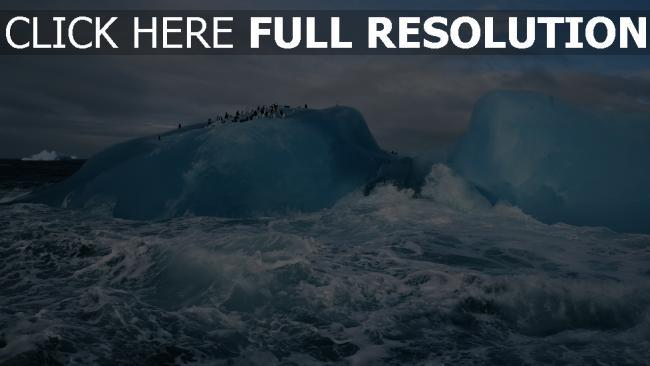 hd hintergrundbilder antarktis eis meer pinguine wellen