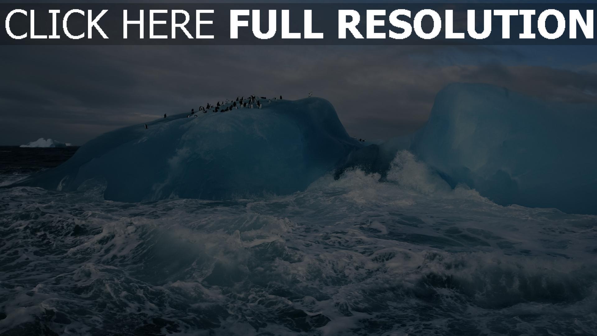 hd hintergrundbilder antarktis eis meer pinguine wellen 1920x1080