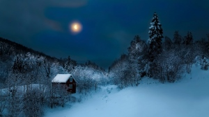 schnee winter haus wald bäume mond