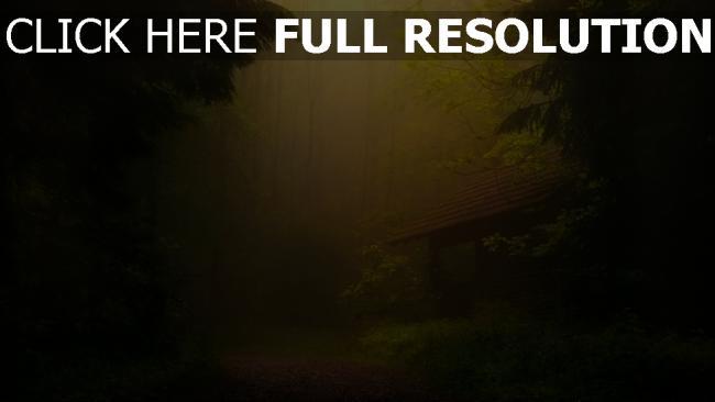 hd hintergrundbilder wald nebel haus trübung licht