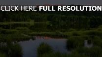 sommer berge natur bäume wasser teich