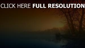 bäume nebel nacht sonnenuntergang fluss