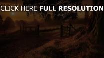 abend sonne straße zaun baum