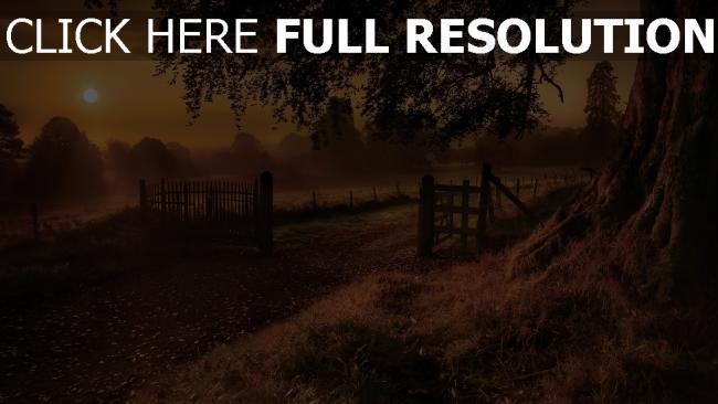 hd hintergrundbilder abend sonne straße zaun baum