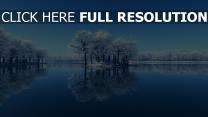 winter see bäume frost reflexion