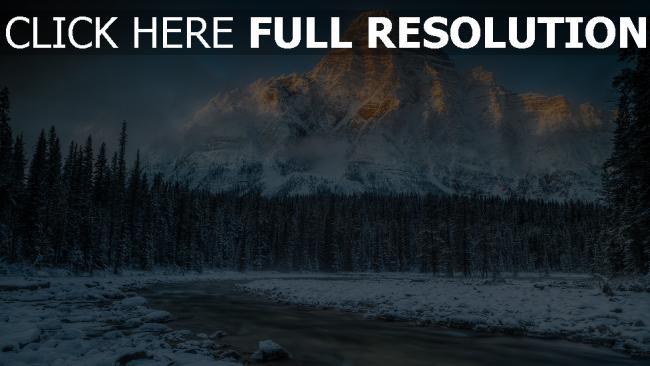 hd hintergrundbilder winter wald kiefer fluss gebirge fels