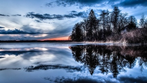 bäume wasser abend himmel spiegelung