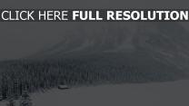 berge wald schnee winter tanne tal