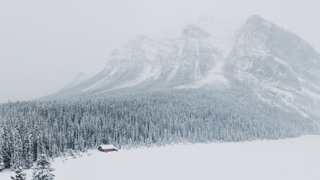 hd hintergrundbilder berge wald schnee winter tanne tal