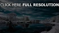 winter see reflexion himmel frost