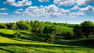 sommer hügel bäume gras himmel wolken