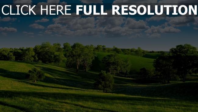 hd hintergrundbilder sommer hügel bäume gras himmel wolken