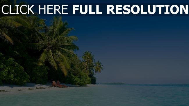 hd hintergrundbilder meer wasser blau palme bäume strand