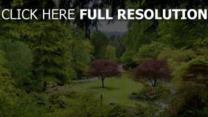 park bäume garten teich kanada