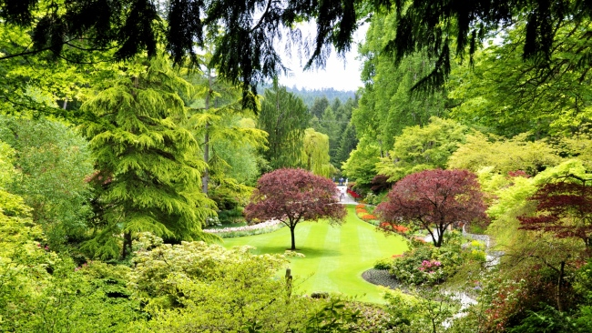 hd hintergrundbilder park bäume garten teich kanada