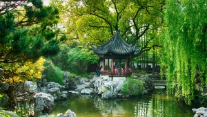 park teich kiefer bäume china