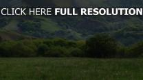 berge ebenen gras sommer bäume wiese