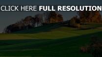 hügel bäume gras holz herbst