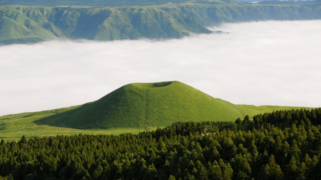 hd hintergrundbilder wald tal nebel japan